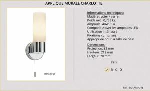 corpuri-de-iluminat_aplica_de_interior_baie_hol_bucatarie